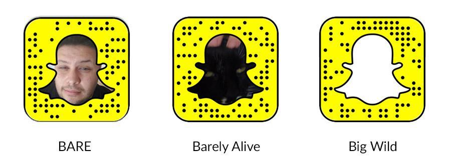 Snapcodes 5