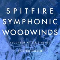 symphonic-woodwinds-cymatics-kontakt libraries
